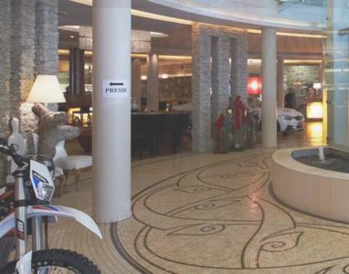 Hotel_Alpine_Palace3