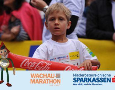 wachau-marathon-11